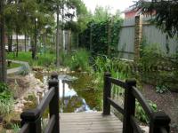 Дизайн пруда